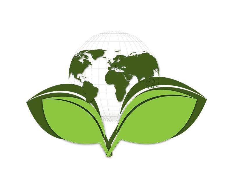 Curso de Responsabilidad Social Corporativa Online
